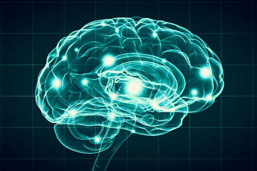 ¿Sabes qué es la neuropsicología y de qué se encarga?